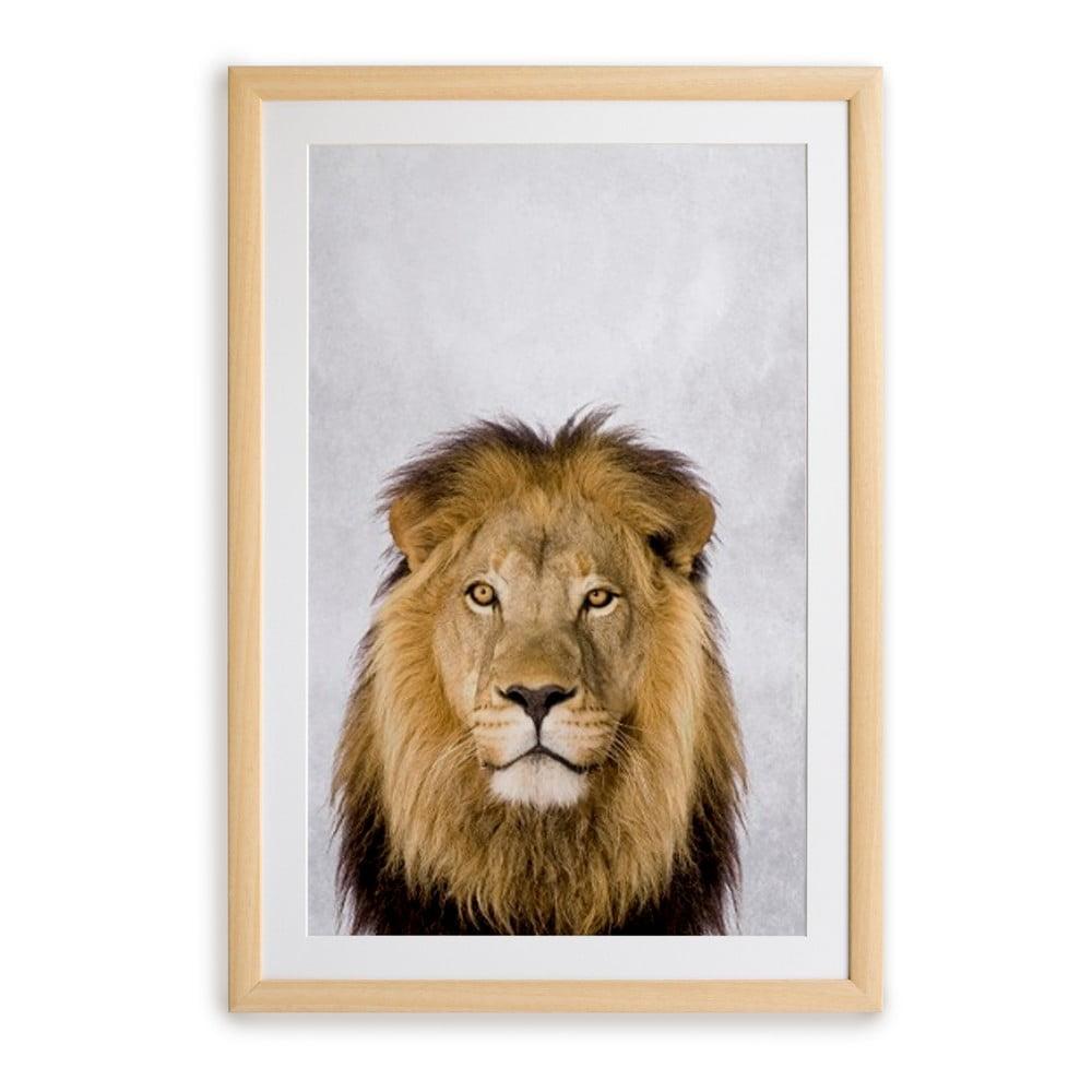 Nástenný obraz v ráme Surdic Lion, 30 x 40 cm