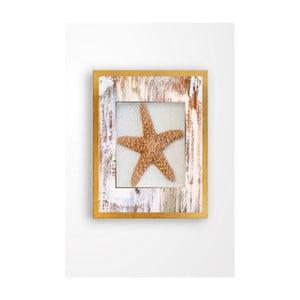 Nástenný obraz na plátne Tablo Center Starfish, 29 × 24 cm