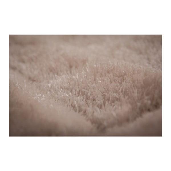Koberec Solstice 529 Cream, 170x120 cm
