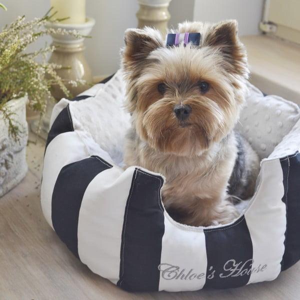Mašľa pre psa Chloe Violet