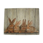 Prestieranie Damily Brown Rabbits 40 x 30 cm