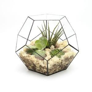 Terárium s rastlinami Super Aztec Penta