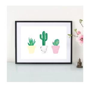 Plagát Kaktusliebe, A3