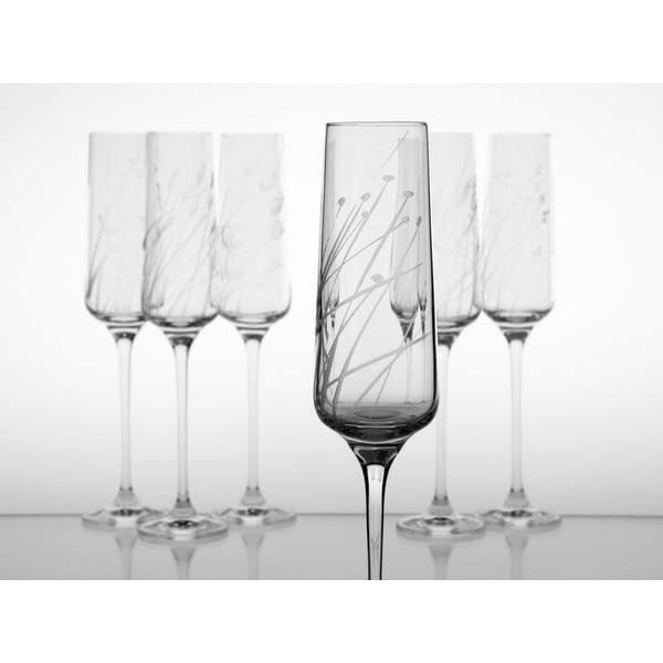 Ateliér Žampach, set 6 ks pohárov na šampanské Traviny hore