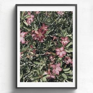 Obraz v drevenom ráme HF Living Maceo, 50 x 70 cm