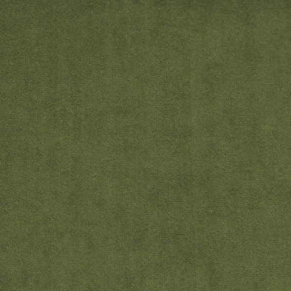 Zelená leňoška Vivonita Nellie