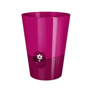 Kvetináč Fresh Herbs Pink