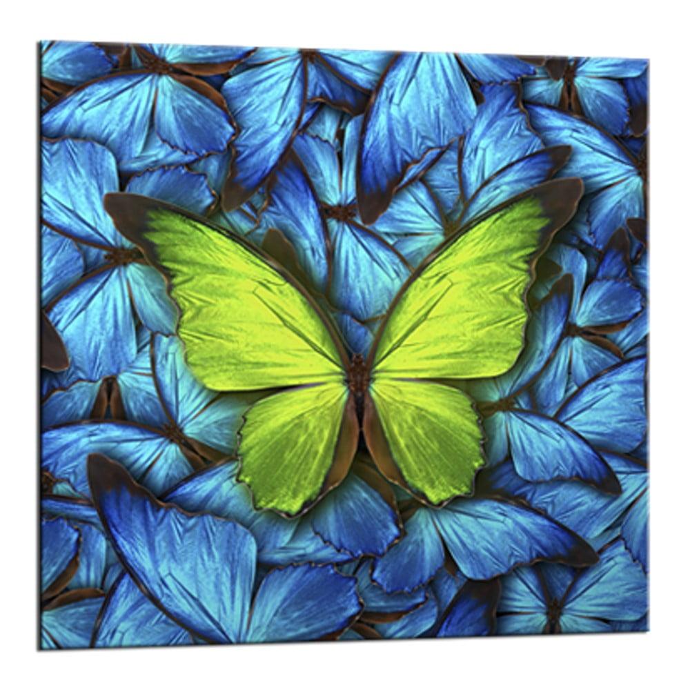 Obraz Styler Glasspik Blue Butterfly, 20 × 20 cm