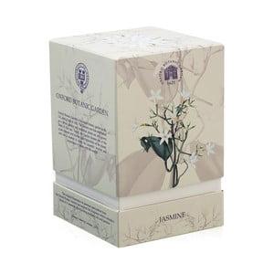 Vonná sviečka s vôňou jasmínu Bahoma London Fragranced, 75 hodín horenia