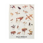 Utierka z bavlny Gift Republic Wild Animals Multi, 50 x 70 cm