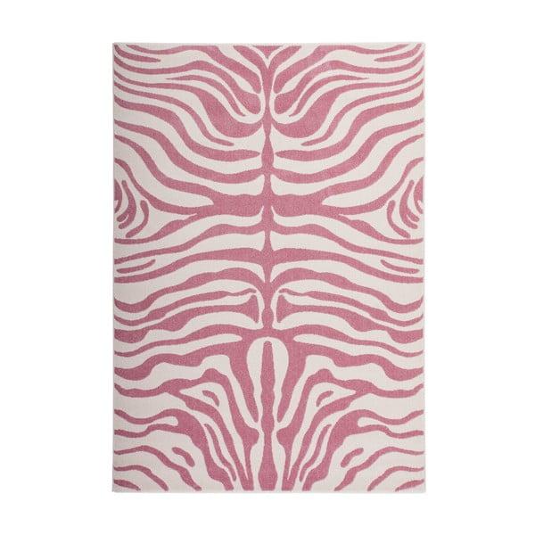 Koberec Fusion 160x230 cm, ružová zebra
