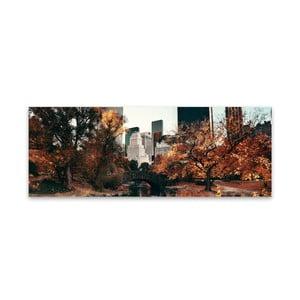 Obraz na plátne Styler Central Park, 150 x 60 cm