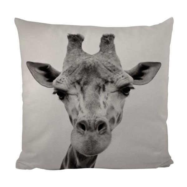 Vankúš Giraffe Gifi, 50x50 cm