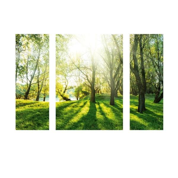 Samolepiaci obraz Summer Forest