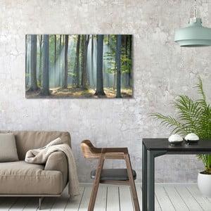 Obraz na plátne OrangeWallz Forest, 70 x 118 cm