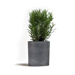 Betonový kvetináč Spicepot 13