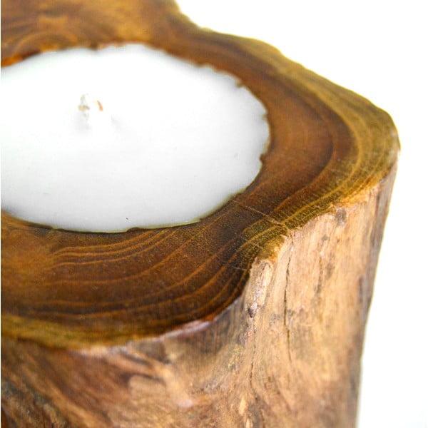 Stojan so sviečkami Piece of Tree
