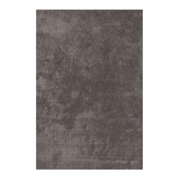 Koberec Ladylike 478 Platin, 160x230 cm