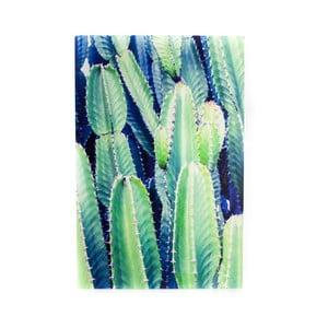 Obraz z kovu Velvet Atelier Cactus, 40×60 cm