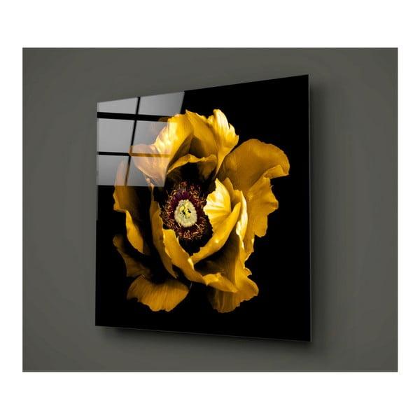 Čierno-žltý sklenený obraz Insigne Calipsa Amarillo, 30 × 30 cm