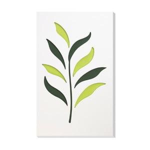 Nástenná dekorácia Vialli Design C-tru Herbs
