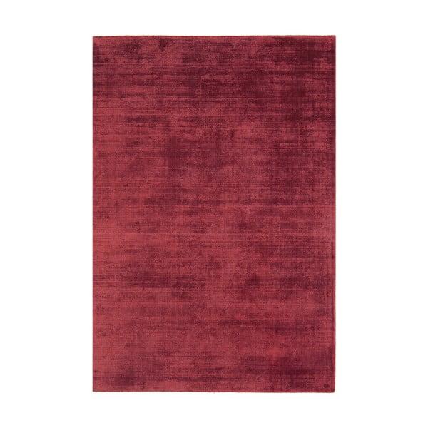 Koberec Blade Berry, 120x170 cm