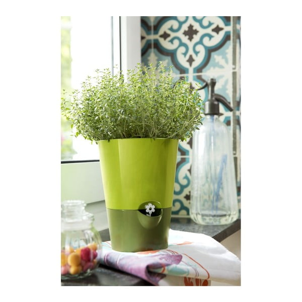 Kvetináč Fresh Herbs Green