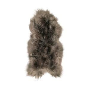 Sivohnedá ovčia kožušina s dlhým vlasom Arctic Fur Ptelja, 100 × 55 cm