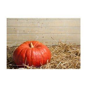 Vinylový koberec Pumpkin, 52×75cm