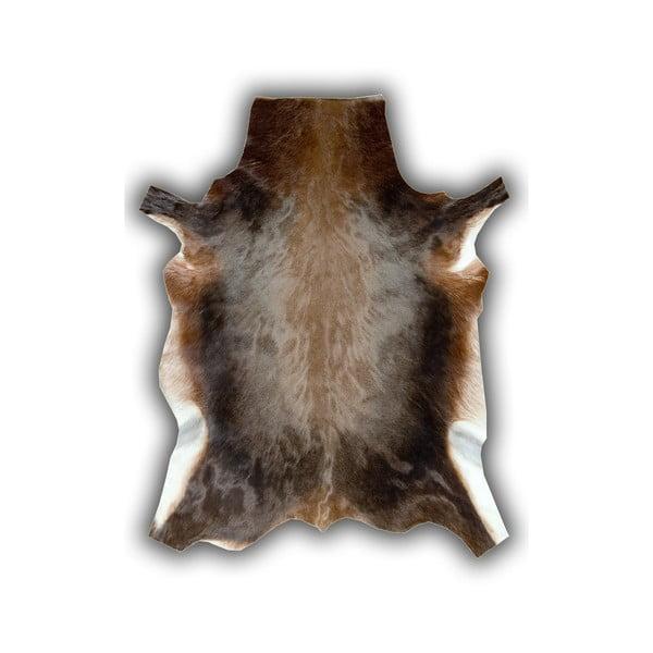 Kožená predložka z byvola Pipsa Blesbok, 120×90cm