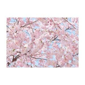 Veľkoformátová tapeta Ružové kvety, 366x254 cm