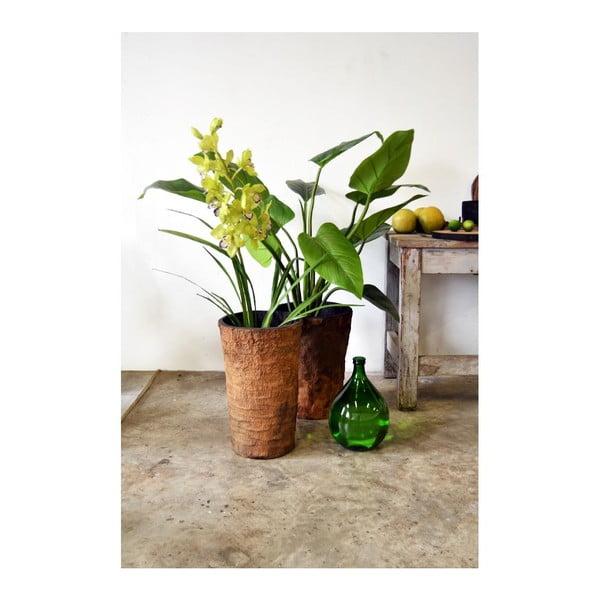 Palmový kvetináč Natural
