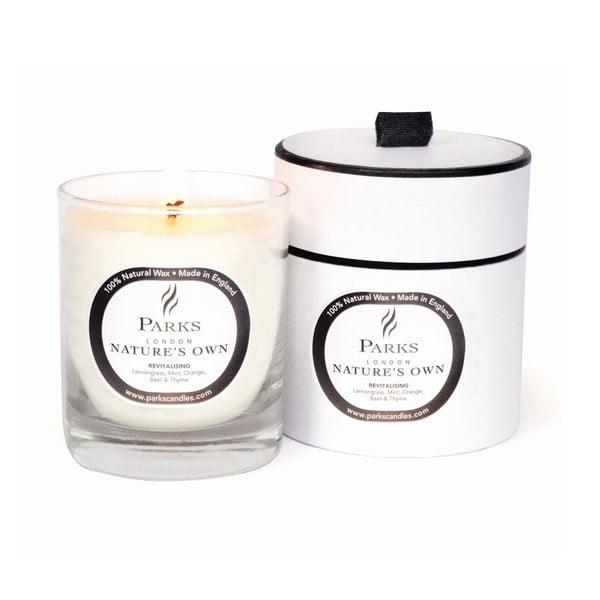 Sviečka s vôňou citrusových olejov Parks Candles London Revitalising Spa, 45hodín horenia