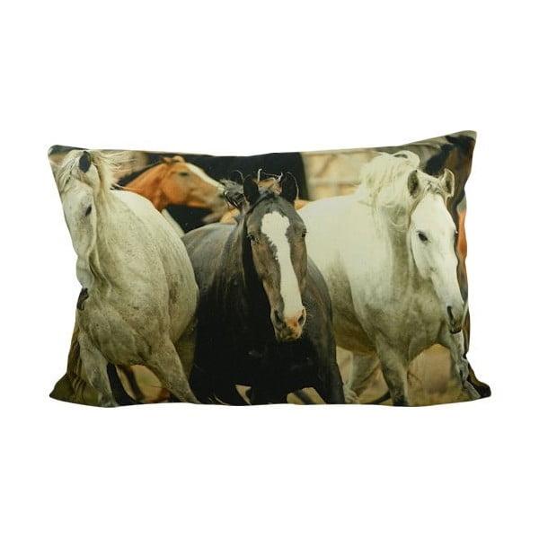 Vankúš Horses Free 60x40 cm