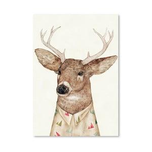 Plagát White-tailed Deer, 30x42 cm