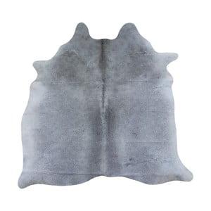 Sivý koberec z hovädzej kože, 167 x 155 cm