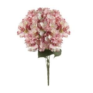 Ružová dekoratívna kvetina Heaven Sends Hydrangea