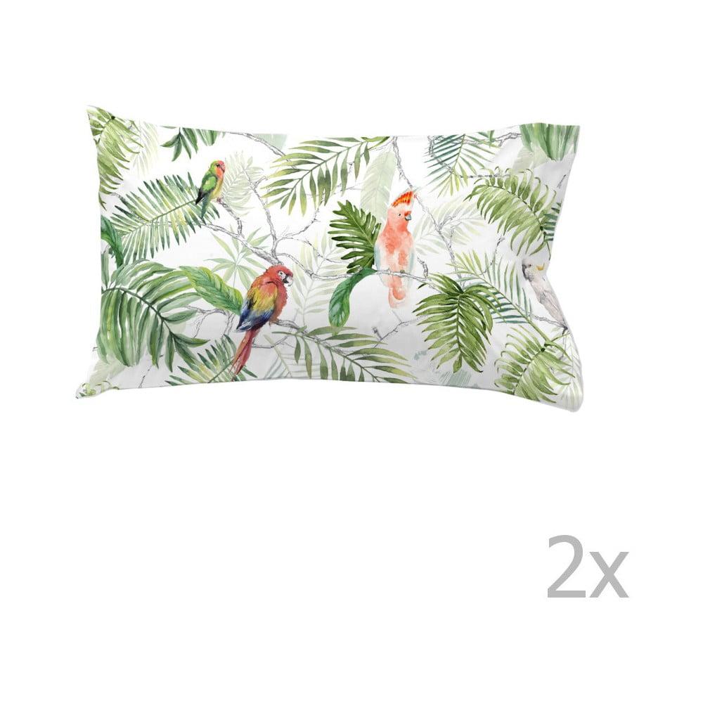 Sada 2 bavlnených obliečok na vankúš Ethere Catey, 50 × 75 cm