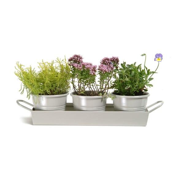Sada kvetináčov Garden Clay s podnosom, 3 ks