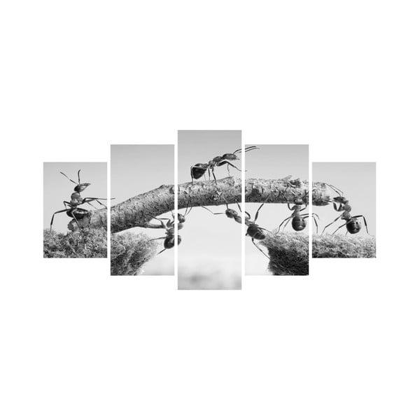 Viacdielny obraz Black&White no. 5, 100x50 cm