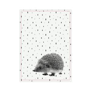 Kuchynská utierka Present Time Hedgehog