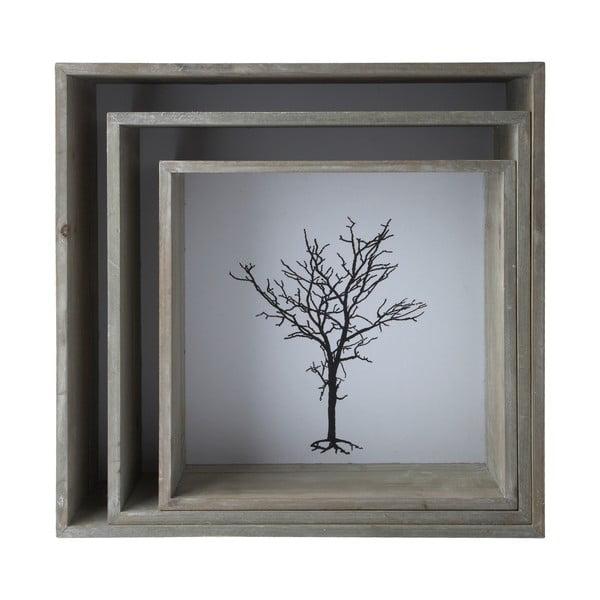 Sada 3 závesných políc Bookcase, 38x38 cm