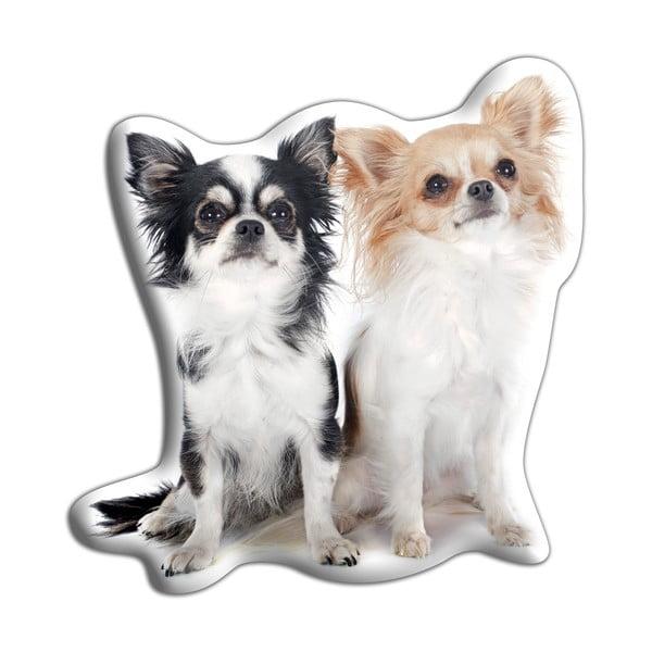 Vankúšik Adorable Cushions Dve čivavy