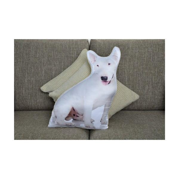 Vankúšik Adorable Cushions Anglický bulteriér