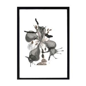 Nástenný obraz A Simple Mess Aile, 44×32cm