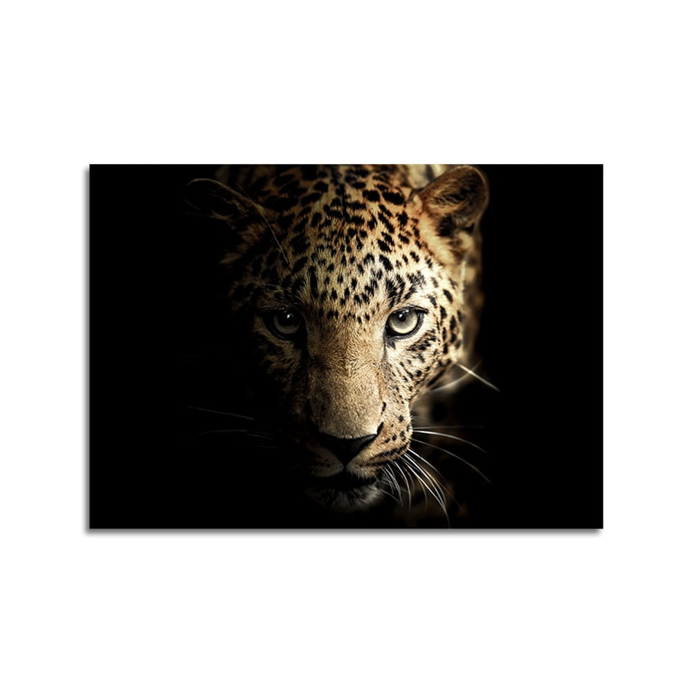 Obraz Styler Glas Animals Leopard, 70 × 100 cm