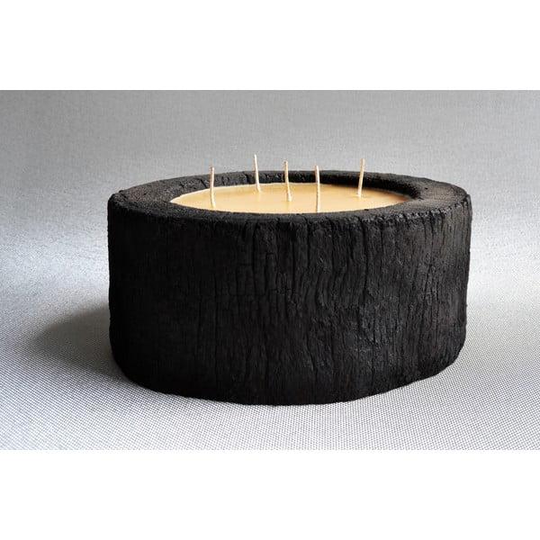 Palmová sviečka Legno Bee so včelím voskom, 140 hodín horenia