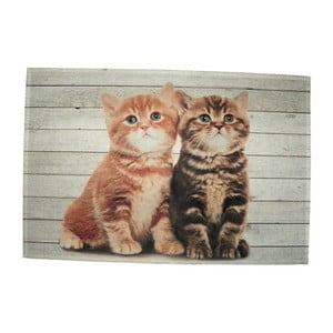 Prestieranie Mars&More Two Kitten British Shorthare, 40 x 30 cm