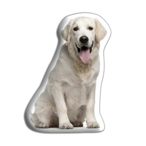 Vankúšik Adorable Cushions Zlatý retriever