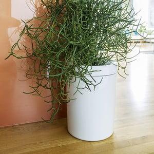 Biely samozavlažovací kvetináč Plastia Calimera B2, ø 17 cm